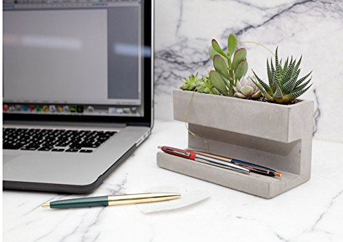 Kikkerland Concrete Desktop Planter - Large (PL02-L) - With Succulents