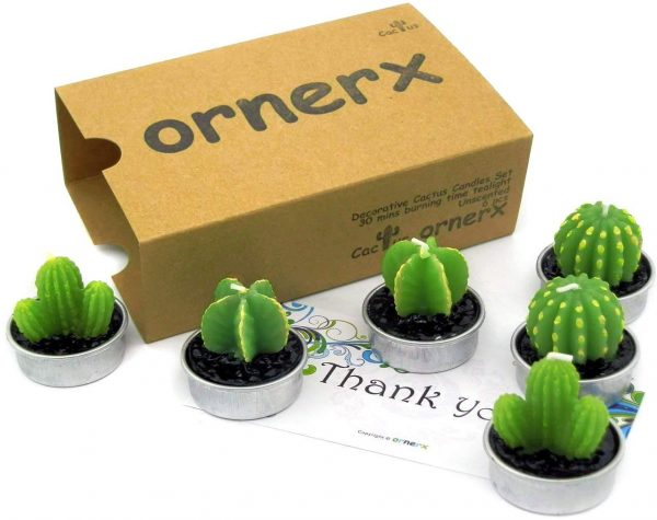 Set of 6 Cactus Tea Light Candles by Ornerx